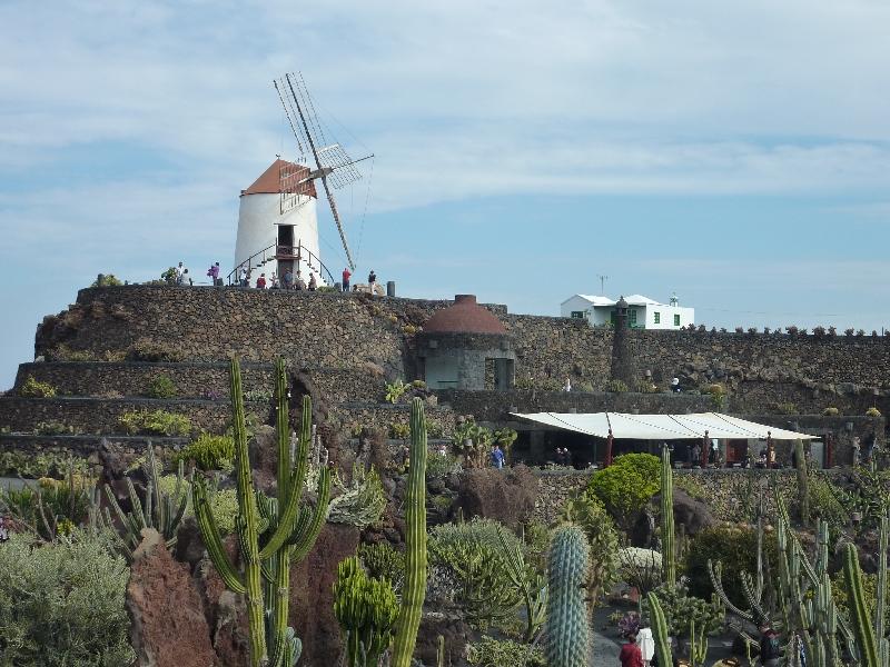 kaktusgarten-auf-lanzarote