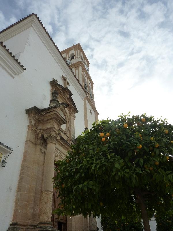 kathedrale-von-marbella