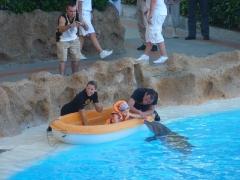 kuss-mit-dem-delfin