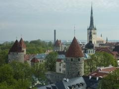 Blick auf Tallins Türme