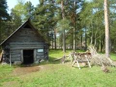 Estlands Natur